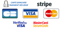 Logo payline paiement securise copie large